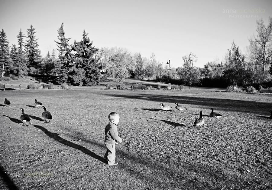 calgary family photographer anna michalska princes island park