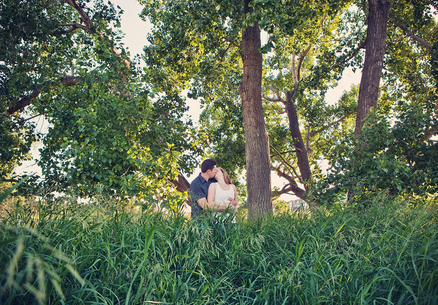 calgary engagement photographer anna michalska trees