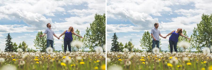 calgary engagement photo dandelions field