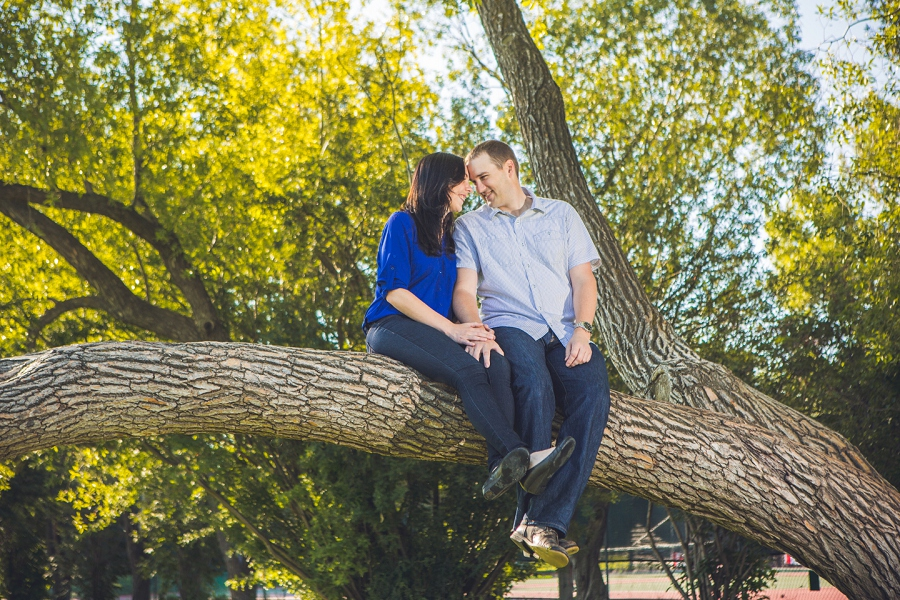 couple sitting on tree rotary park engagement session anna michalska