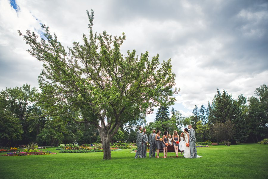 bridal party under a big tree riley park calgary wedding photographers anna michalska