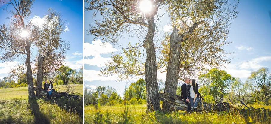 pincher creek calgary engagement photography anna michalska bride groom with large tree