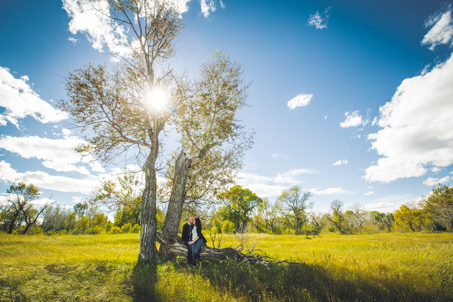 pincher creek calgary engagement photography anna michalska bride groom sunny large tree
