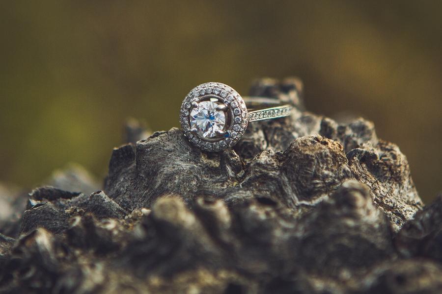 engagement ring on tree fish creek park calgary engagement photographer anna michalska