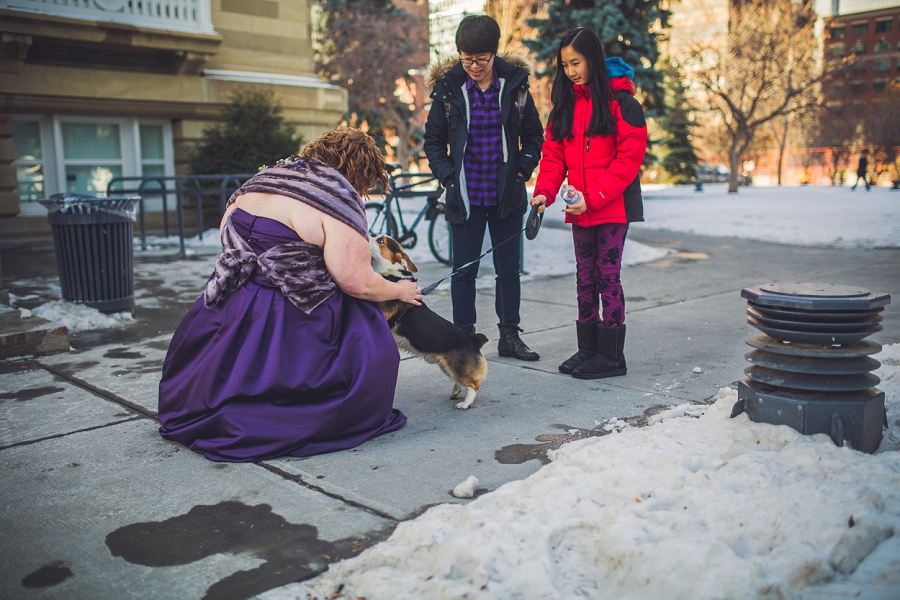 calgary wedding photographer anna michalska winter wonderland central memorial park bridesmaid with dog