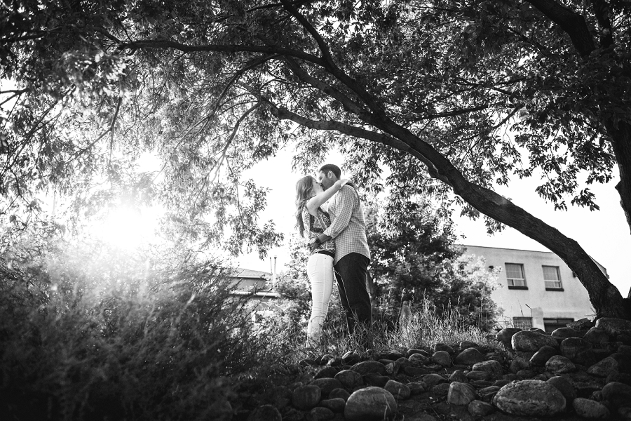 tree black and white couple sunset ramsay calgary engagement photos anna michalska wedding summer