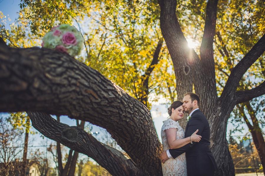 rotary park bride groom big tree rotary park calgary wedding photographer anna michalska