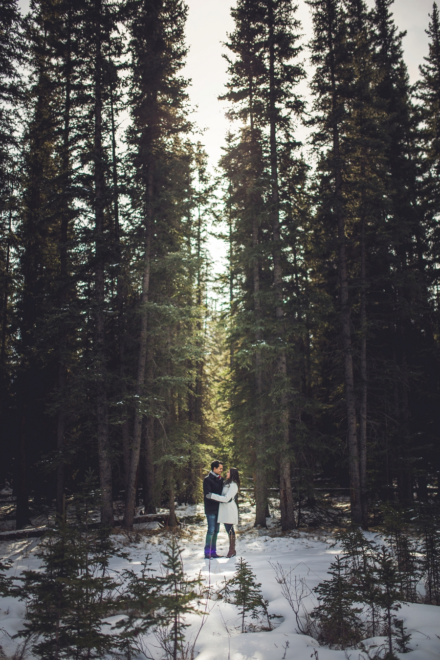 winter banff forest engagement photos wedding calgary