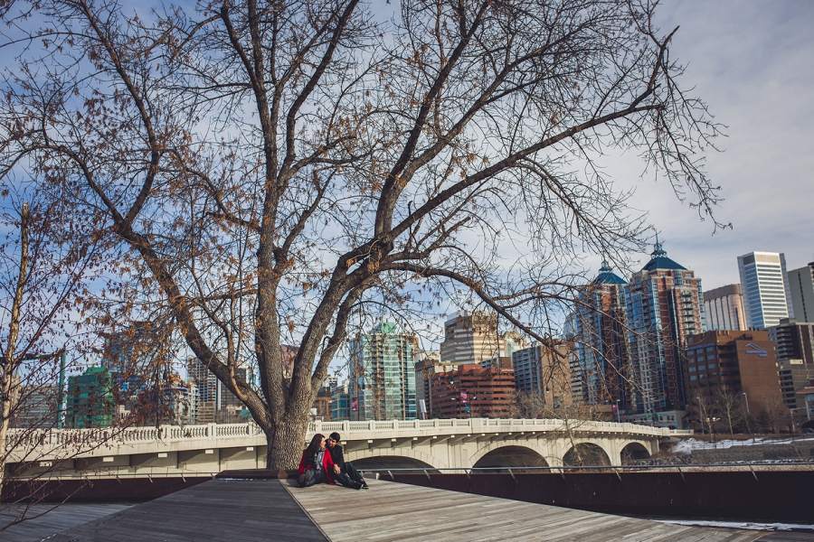 couple under large tree memorial drive kensington calgary engagement photos