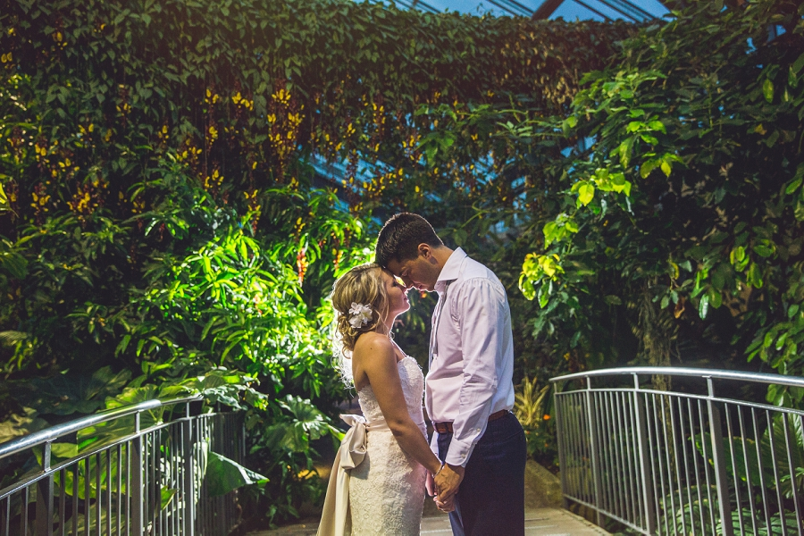 butterfly conservatory bride groom calgary zoo summer wedding