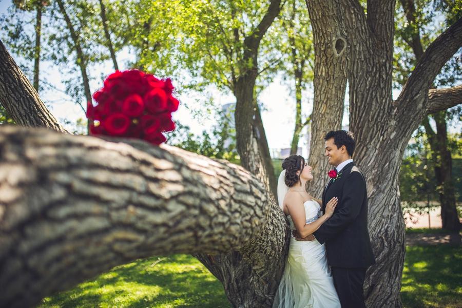 rotary park calgary international wedding red roses