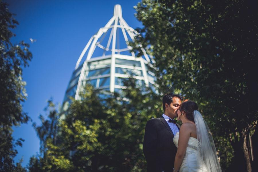 international wedding calgary zoo groom kissing bride on forehead