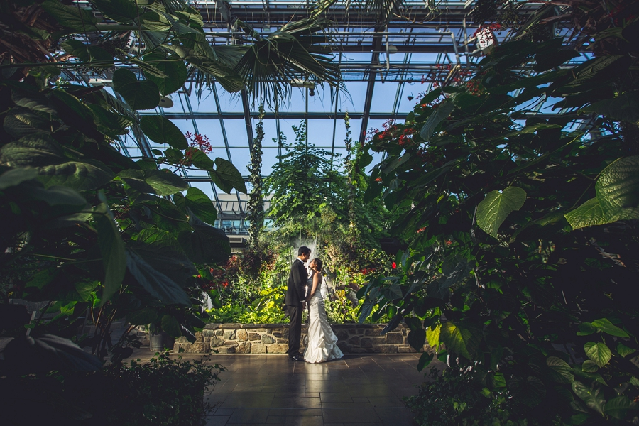 calgary zoo wedding bride groom butterfly conservatory