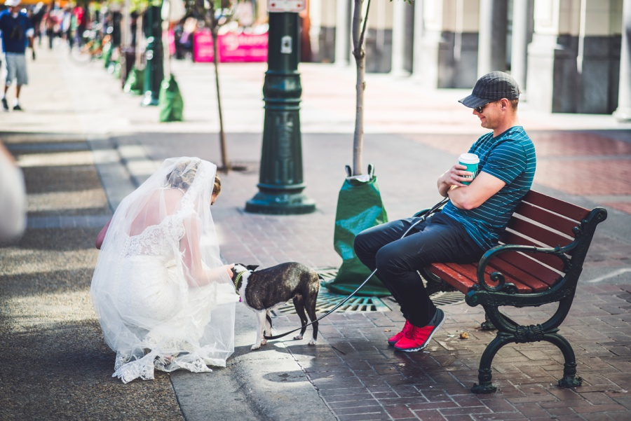 calgary wedding photographer stephen ave bride with puppy