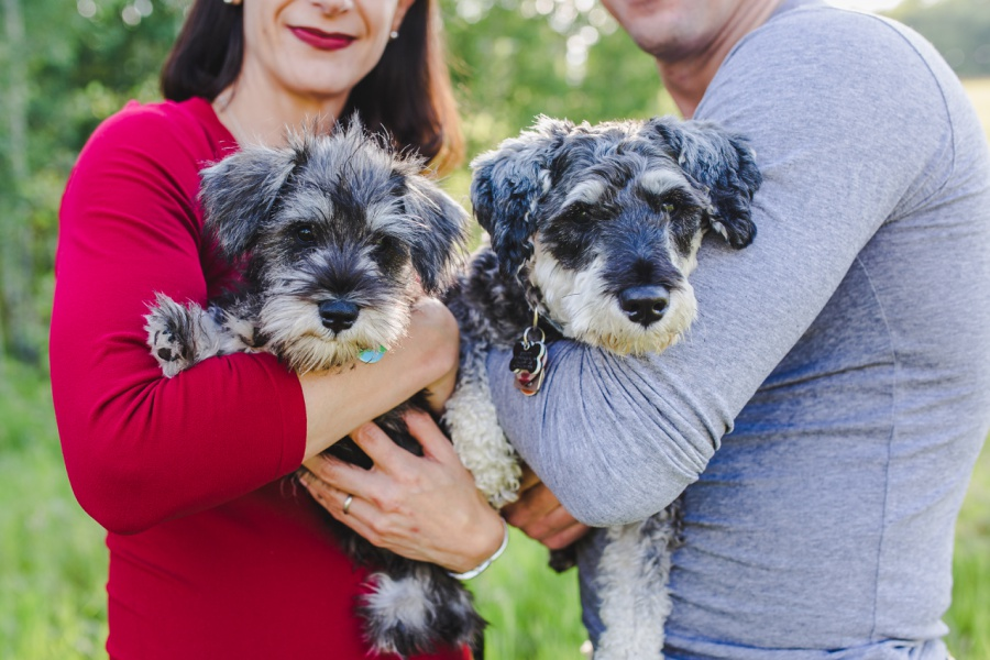 Steblyk Family | Calgary Dog Photographer