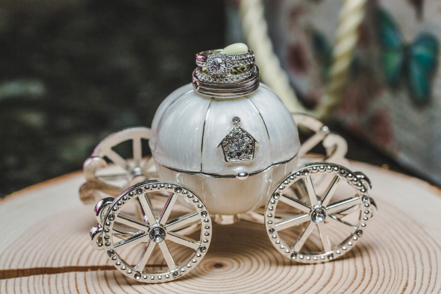 calgary ranche restaurant wedding photographer wedding rings on cinderella carriage