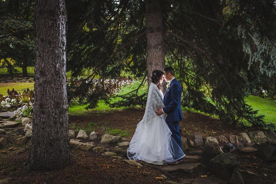 calgary chinese wedding photographers pine trees riley park